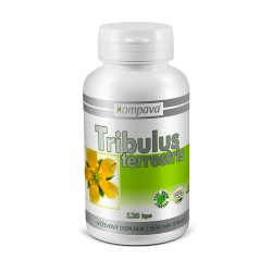 Tribulus Terrestris 400 mg/120 kps
